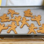 Ninja Men Cookie Cutters