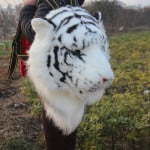 Tiger Head Plush Backpack