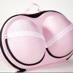 Bra Travel Case 1