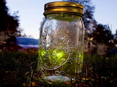 Electronic Firefly In a Jar 1