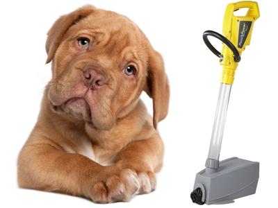 Feces Vacuum