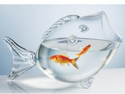 Fish Shaped Fish Bowl 1