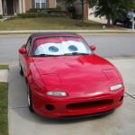Lightning McQueen Sun Shade 8