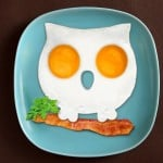 Owl Shaped Egg Mold 3