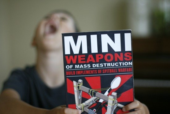 Mini Weapons of Mass Destruction Instruction Book 1