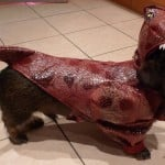 Raptor Dog Costume 2
