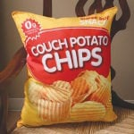 Couch Potato Chips Pillow